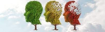 Un nouvel espoir, timide, pour traiter la maladie d'Alzheimer